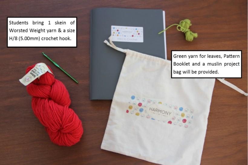 Beginning-Crochet-Class-Materials-flower project summer 2013